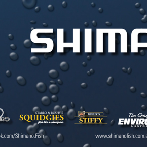 shimano price list design